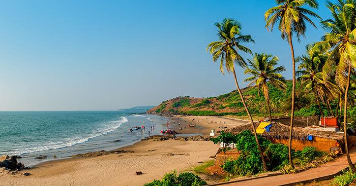 Bulk SMS Service Provider in Goa