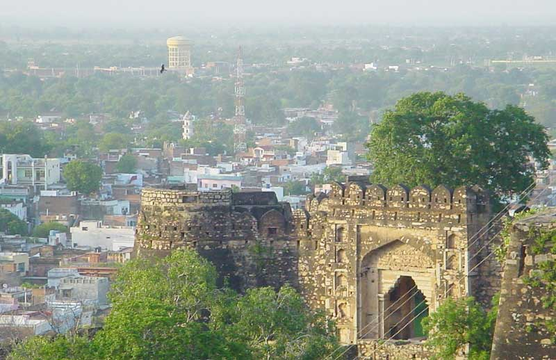 Bulk SMS Service Provider in Jhansi