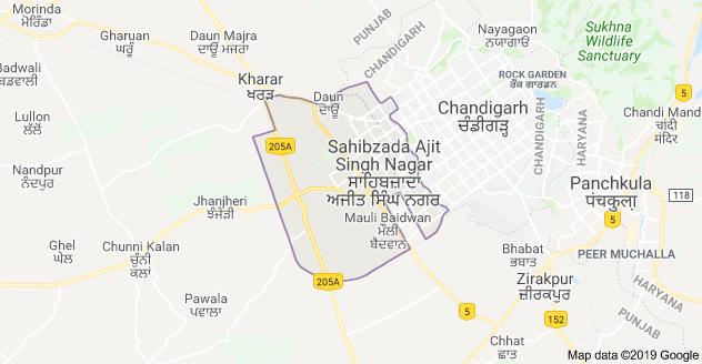 Bulk SMS Service in Mohali